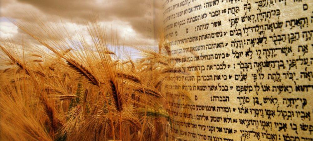 shavuot-pentecostes